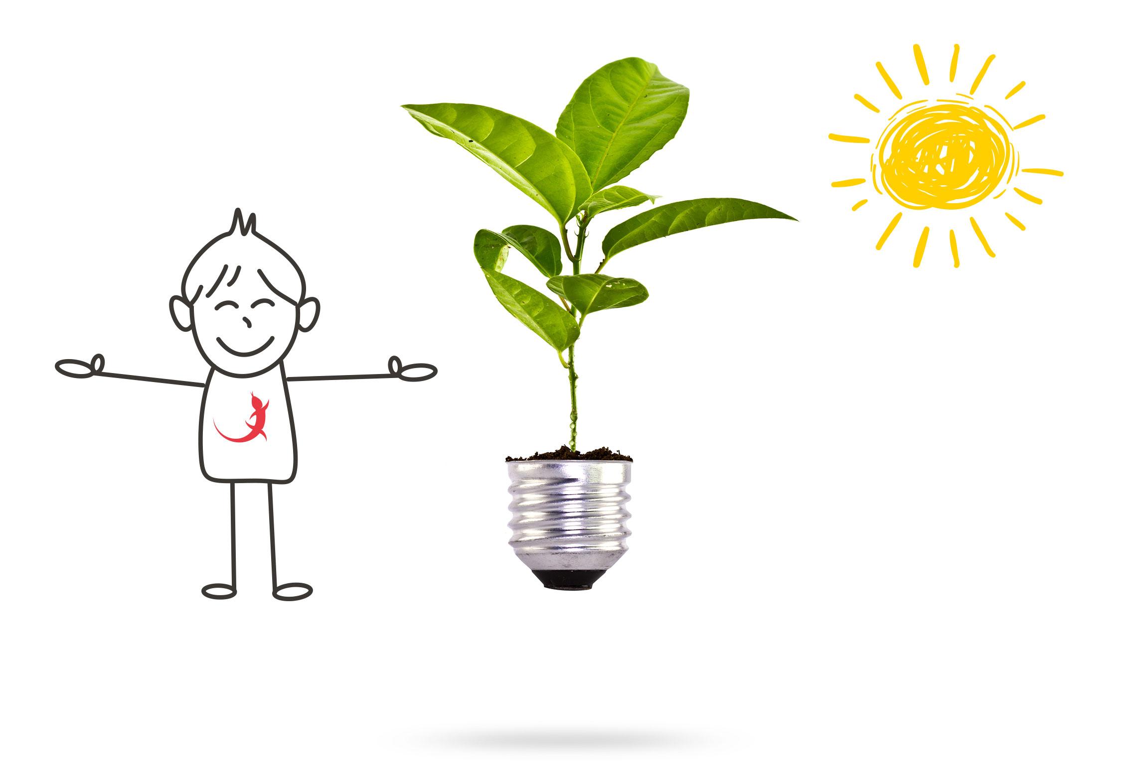 EIDEX Verantwortung Energieeffizienz
